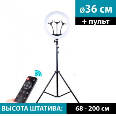 Кольцевой осветитель 36 см (RL-14 с пультом) + cтойка 2м