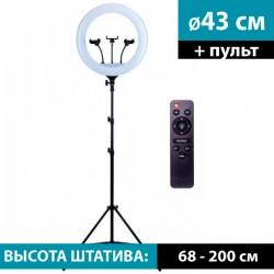 Кольцевой осветитель YQ-460B (с пультом) + cтойка 2м